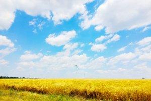 Вітрова енергія 4